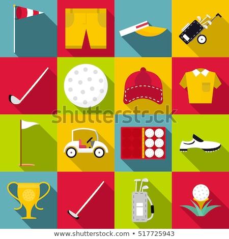 16 ícones os ícones do web usuário interface projeto Foto stock © ayaxmr