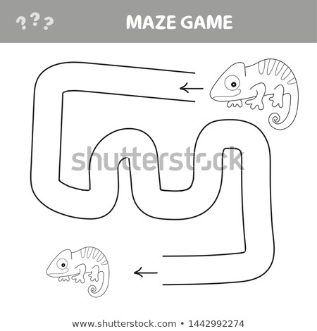 カメレオン 迷路 ゲーム ヘルプ 見つける 方法 ストックフォト © natali_brill