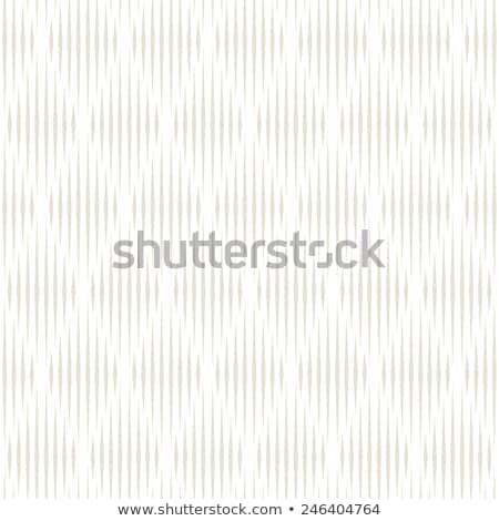 Vector seamless lattice pattern. Modern subtle texture with monochrome trellis. Repeating geometric  Stock photo © samolevsky