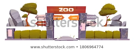 Lion with zoo sign isolated Stock photo © bluering