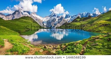 Alpok nyár kilátás nyugalmas hegy magányos Stock fotó © wildman