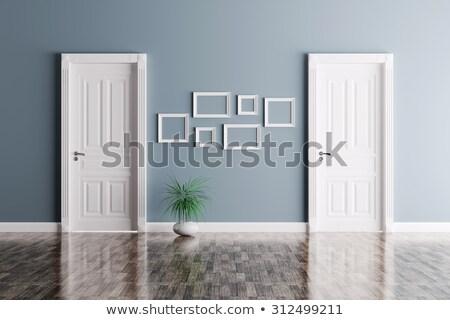 kahverengi · ön · kapı · giriş · Bina · duvar · dizayn - stok fotoğraf © fotografci