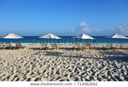 luz · do · sol · ícone · praia · ondas · quente - foto stock © jsnover