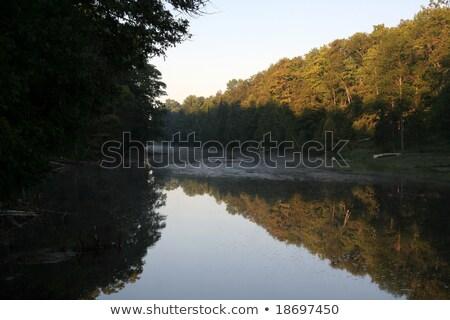 Nehir simetri atış ışık ağaç Stok fotoğraf © ca2hill