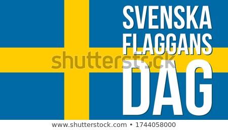 Országok EU térkép zászló Európa szövetség Stock fotó © gaudiums