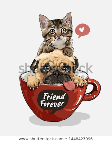 Retro perro gafas funny wallpaper estudio Foto stock © Shevs