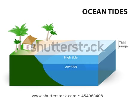 Tropical beach with palm at low tide Stock photo © pzaxe