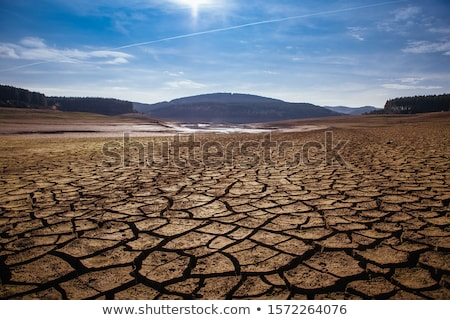 almost dry soil Stock photo © prill