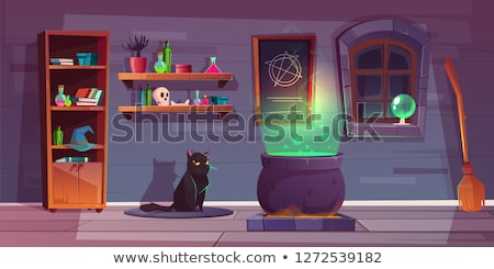 Halloween set with witch's stuff stock photo © AnnaVolkova