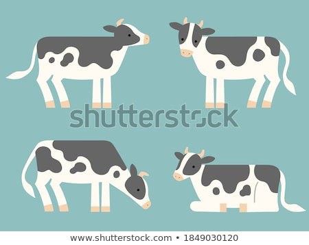 cow laid in the grass Stock photo © taviphoto