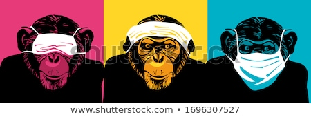 Three wise monkey Stock photo © dagadu