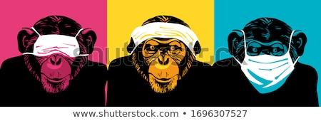 apen · zie · spreken · geen · kwaad - stockfoto © dagadu