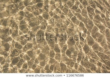 Zon schaduwen zanderig oceaan vloer achtergrond Stockfoto © premiere