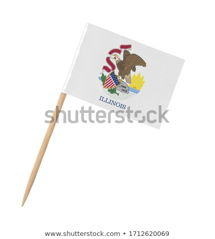 minyatür · bayrak · Illinois · yalıtılmış · toplantı - stok fotoğraf © bosphorus