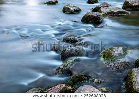 higgadt · folyik · patak · kövek · felfelé · néz · folyóvíz - stock fotó © swatchandsoda