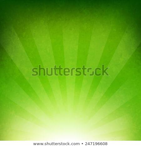 Foto stock: Vector · verde · anunciante · resumen · azul