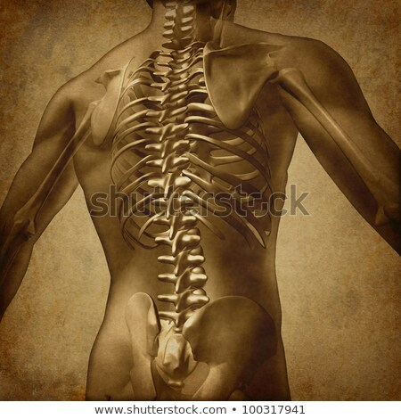 Human Back Grunge Texture Stock photo © Lightsource