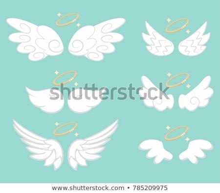 fehér · szárnyak · illusztráció · pár · gyönyörű · madár - stock fotó © cteconsulting