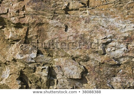 Hard cracked dry dirt with quartz stock photo © sherjaca