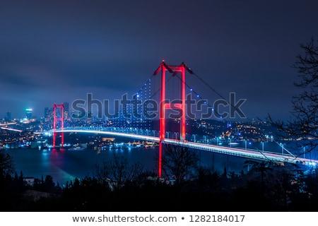 Akşam İstanbul vektör görüntü Türkiye siluet Stok fotoğraf © grechka333