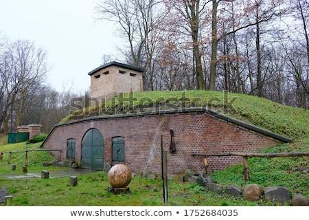 historic artillery Stock photo © pavelmidi