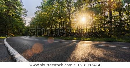 Curvy road on hillside Stock photo © HerrBullermann