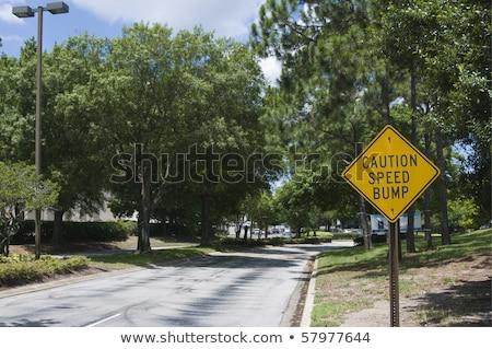Speed Hump Ahead Sign Stock photo © pancaketom