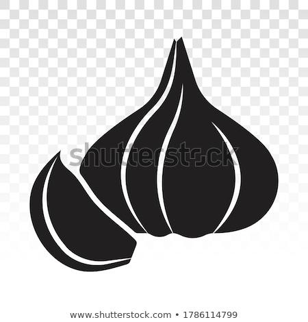 greggio · aglio · legno · chiodi · di · garofano · testa - foto d'archivio © mady70