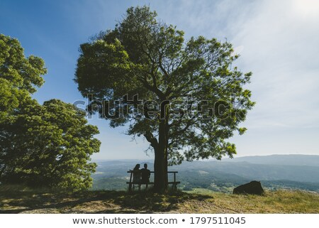 man woman sitting under love tree stock photo © elmiko
