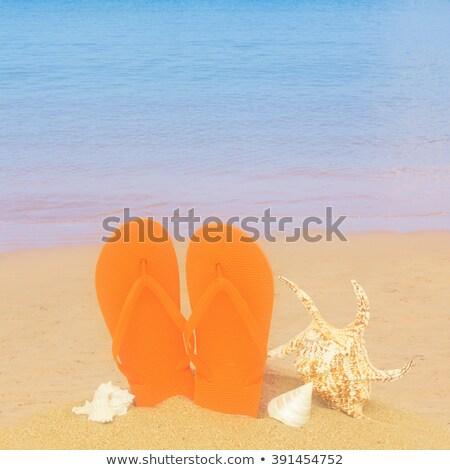 Paire orange sandales isolé blanche Photo stock © neirfy