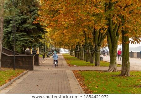 Girl Riding Bike Along Garden Path Stock photo © monkey_business