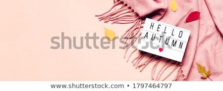 Outono bandeira decorado folhas abstrato projeto Foto stock © timurock