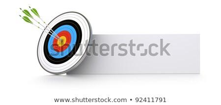 Goal Settings on Green Direction Arrow Sign. Stock photo © tashatuvango