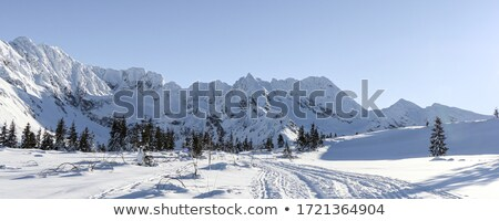 snowy mountains in clouds at sun day stock photo © bsani