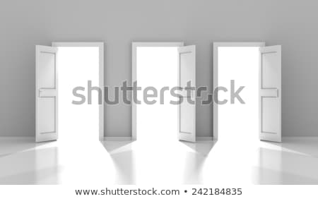 Stok fotoğraf: Three Doors With Copyspace 3d Render