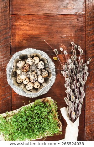 easter composition of cress and catkins on wooden table stock photo © przemekklos