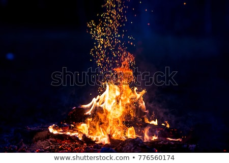 camp fire embers stock photo © fouroaks