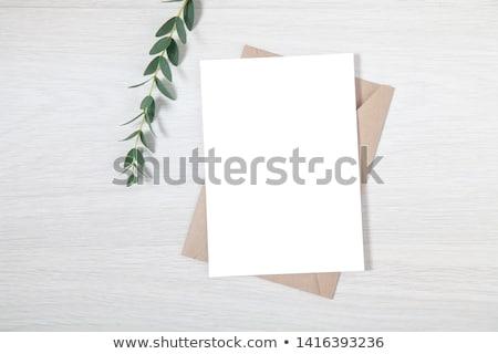 Blank card on wood table Stock photo © cherezoff