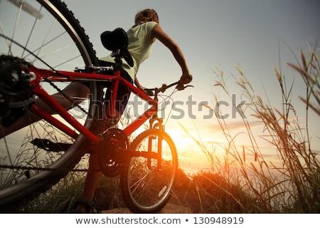 ragazza · bicicletta · estate · sera · donna · donne - foto d'archivio © Paha_L
