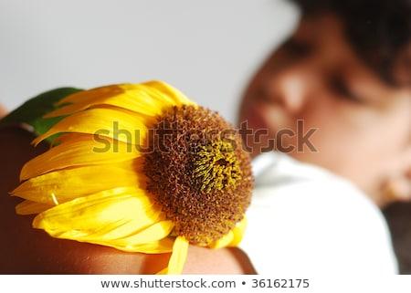 меланхолия · сцена · Cute · девушки · высушите · подсолнечника - Сток-фото © zurijeta