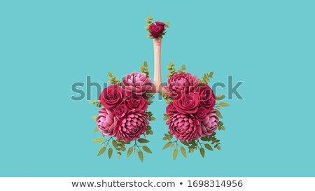Breathing Disease Concept Stock photo © Lightsource