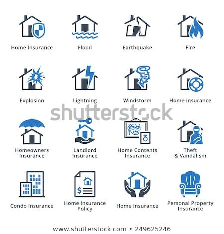 Eigendom verzekering orkaan vernietigd huis illustratie Stockfoto © orensila