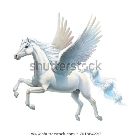 лошади иллюстрация геральдика татуировка дизайна изолированный Сток-фото © Genestro