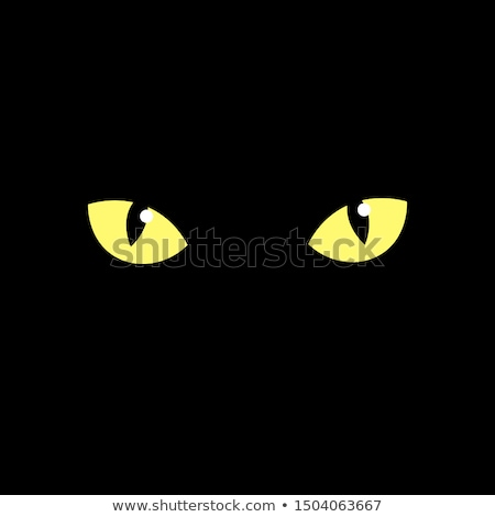 cat eyes in darkness Stock photo © Panaceadoll