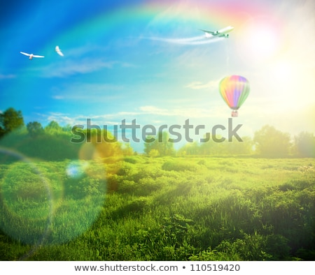balloons rainbow over sky stock photo © fotoyou