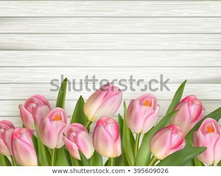 Bouquet tulipes bois eps 10 table en bois Photo stock © beholdereye