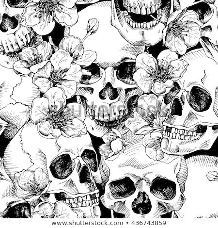 sem · costura · crânio · padrão · preto · e · branco · humanismo · grunge - foto stock © Vanzyst
