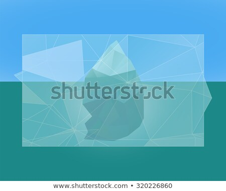 Eisbergs Plakat Banner Flyer niedrig Stil Stock foto © JeksonGraphics