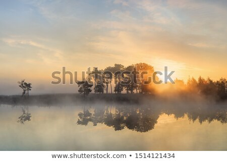 Belgium Rustic Landscape stock photo © zhekos