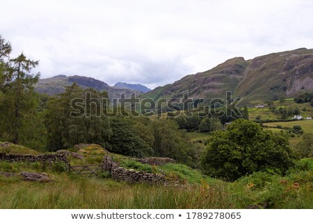 Open gate with mountain range view Stock photo © stevanovicigor
